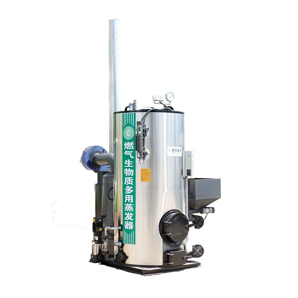 陕西立式生物质蒸汽发生器